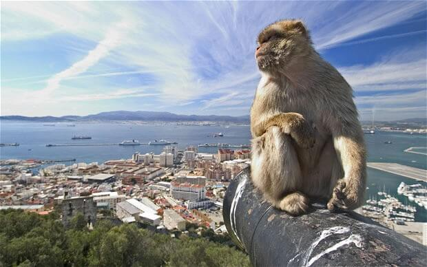 Gibraltar Excursion by Boat