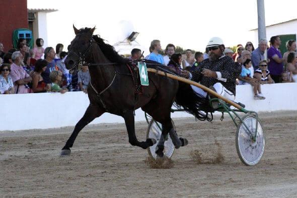 Horse Racing Palma