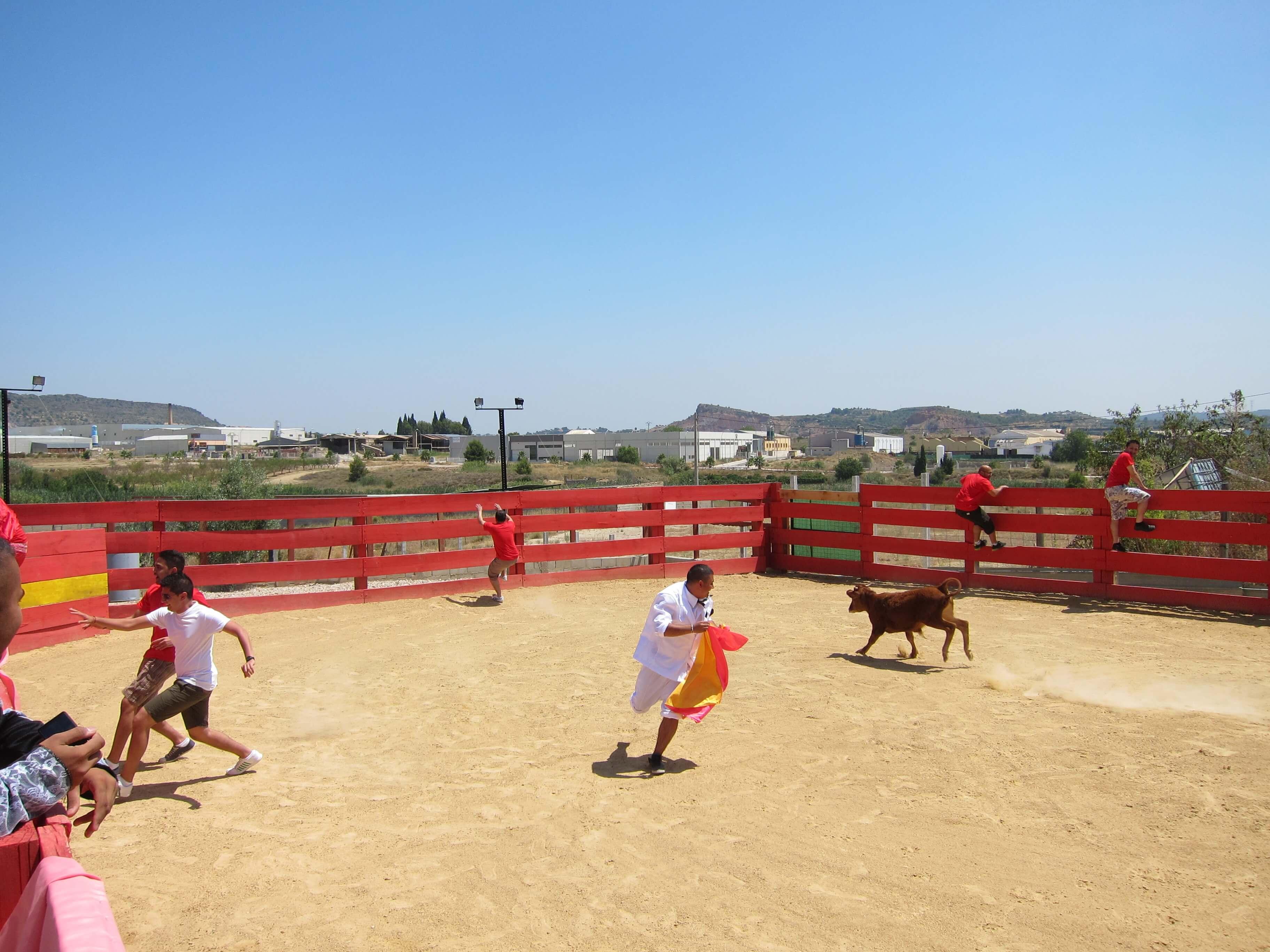 Palma Bull Running