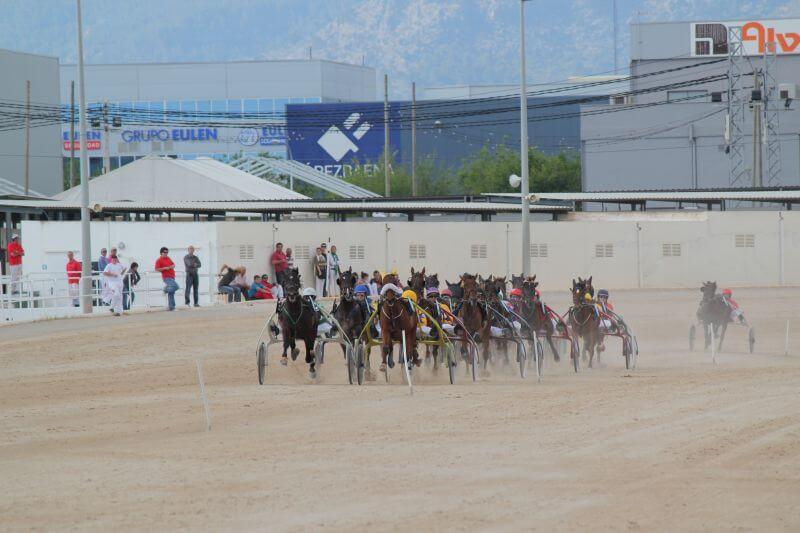 Courses de chevaux