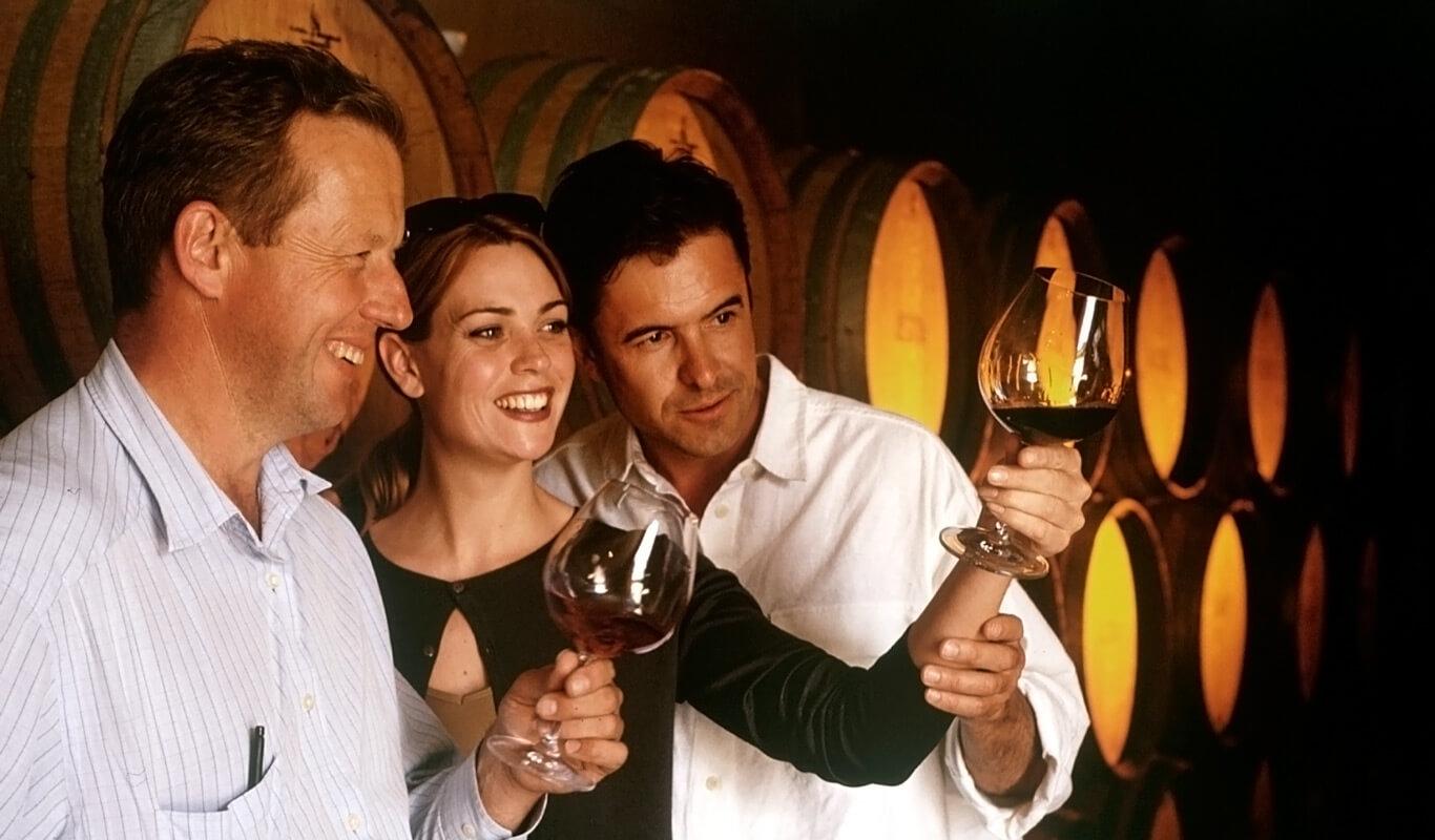 Vineyard Visit